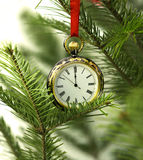 Old watch on conifer branch with red lace. Old pocket watch hanging on natural conifer branches. Christmas and New Year card with copy space royalty free stock photos