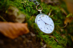 Old watch in the nature Royalty Free Stock Photo