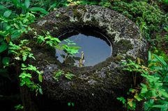 Old water-filled stone basin covered with moss stock images