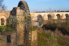 The old water mill of Cordoba, Spain. The ancient watermill of Cordoba, Andalusia, Spain Royalty Free Stock Photo