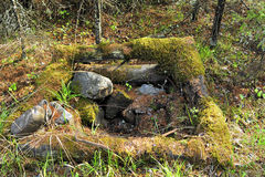 Old water parapet in the forest Stock Photography