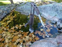 Old water pump in a small body of water. Water pump in water with leaves Stock Image