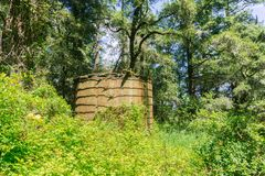 Old water tank in the forest Royalty Free Stock Photo