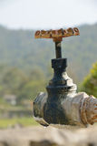 Old water valve. Stock Image