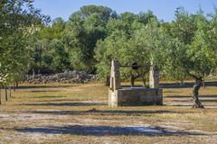 Old water well in the countryside. Old water well in a campaign. Olive trees and dry stone wall Royalty Free Stock Image