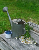 Old watering can with flowers and berries Stock Photo