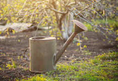 Old watering can in garden Stock Photo