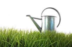 Old watering can in grass Stock Image