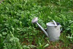 Old watering can. Old metal watering can with green garden background Stock Photos