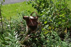 Old Watering Can royalty free stock photos