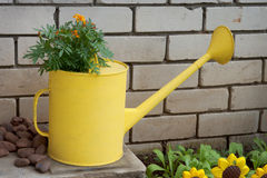 Old watering in garden design Stock Photography