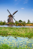 Old watermill and water lily channels. Windmill and water lily in the channel in spring, at Kinderdijk-Elshout, Holland Royalty Free Stock Photography