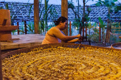 Traditional silk production. Old way silk producing in Thai village Royalty Free Stock Photo