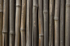 Old Weathered Bamboo Royalty Free Stock Photos