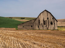 Old weathered barn surrounded by wheat fields. An old weathered barn is surrounded by rolling hills planted in wheat in The Palouse of south eastern Washington Stock Photography