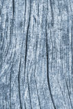 Old Weathered Battered Cracked Wood Rough Powder Blue Grunge Texture Detail Royalty Free Stock Photos