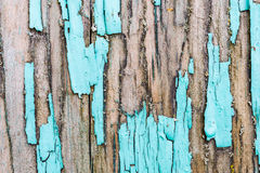 Old, weathered boards with peeling paint. Stock Photography