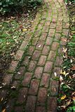 Old and weathered brick footpath with overgrown moss Stock Photo