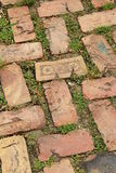 Old weathered brick walkway,one stamped with stars Royalty Free Stock Images