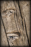 Old Weathered Cracked Knotted Pine Wood Floorboards Vignetted Grunge Texture Royalty Free Stock Images
