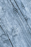 Old Weathered Cracked Knotted Powder Blue Pine Wood Floorboards Grunge Texture Royalty Free Stock Images