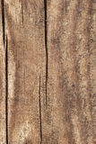 Old Weathered Cracked Rotten Pinewood Floorboard Planking Texture Detail. Old weathered rotten cracked rough Pinewood floorboard planking, grunge texture detail Stock Photo