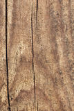 Old Weathered Cracked Rotten Pinewood Floorboard Planking Texture Detail. Old weathered rotten cracked rough Pinewood floorboard planking, grunge texture detail Royalty Free Stock Photography