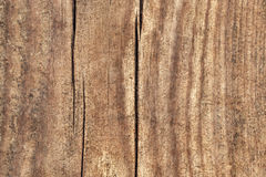 Old Weathered Cracked Rotten Pinewood Floorboard Planking Texture Detail. Old weathered rotten cracked rough Pinewood floorboard planking, grunge texture detail Royalty Free Stock Images