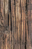 Old Weathered Rotten Cracked Wooden Railway Cross Tie Surface Grunge Texture – Detail. Photograph of old, rough, weathered, rotten wooden Railway Cross Tie Royalty Free Stock Images