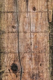 Old Weathered Cracked Wooden Planks Surface Texture. Old, weathered, rotten plank, with wood knots, lateral cracks, lichen and fungi growth Stock Photos