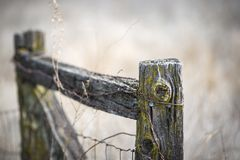Free Old Weathered Fence Post Royalty Free Stock Images - 107773509