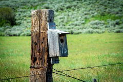 Old Weathered Fence Post Iwth A Bird House On It Royalty Free Stock Images
