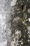 Old weathered granite wall Stock Photography