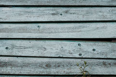 Old weathered grey wooden plank wall background. Detailed  texture. Royalty Free Stock Photos
