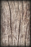 Old Weathered Knotted Wood Rough Battered Grooved Vignetted Grunge Texture Royalty Free Stock Photography