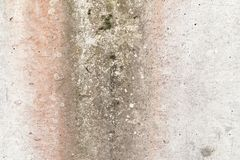 Old, weathered, moss-infested concrete wall standing as a support wall in a damp area, texture for backgrounds stock image