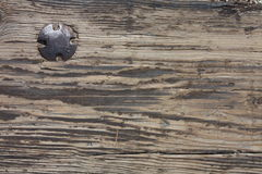 Old weathered plank with old bolt in it Stock Images