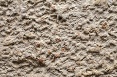 Old weathered plaster wall Stock Photography