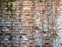 Old weathered red brick wall. Stock Photography
