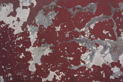 Old weathered red wall texture. Royalty Free Stock Image