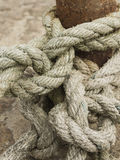 Old weathered ropes Royalty Free Stock Image