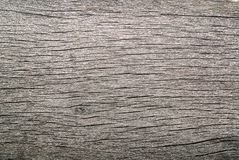 Old Weathered Rotten Cracked Knotted Coarse Wood. Gray Grunge Texture royalty free stock photo
