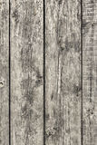 Old Weathered Rotten Cracked  Knotted Floorboards Surface Textur Stock Photos