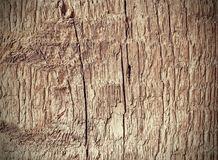 Old weathered rough wood background or texture. Royalty Free Stock Photos