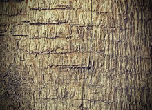 Old weathered rough wood background or texture Stock Photo