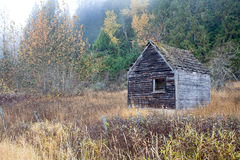 And old weathered shed. Royalty Free Stock Photos