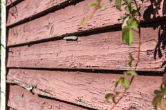 Old Weathered Siding Stock Images