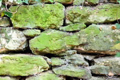 Old weathered stone wall in the forest with moss and cotwebs Stock Image