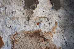Old weathered wall texture. Royalty Free Stock Image