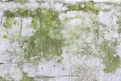 Old and weathered wall texture Royalty Free Stock Image